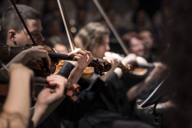 Concursos de violín