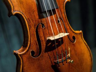 Maderas para violines